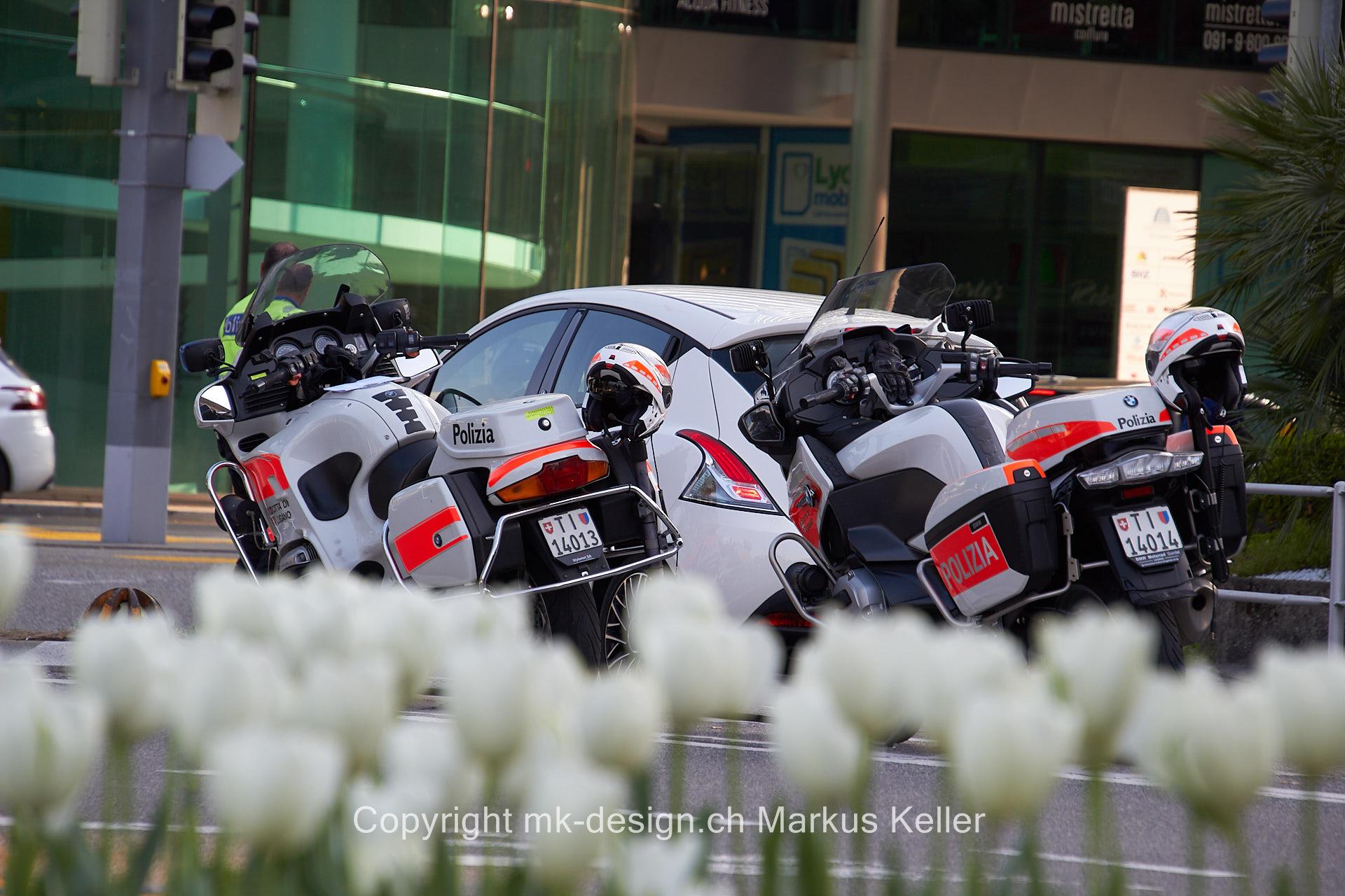 Pflanze   Blume   Motorrad