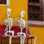 Skelett   Stilleben