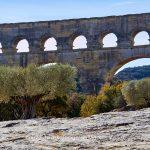 Bauwerk   Aequadukt   Pflanze   Baum   Olive