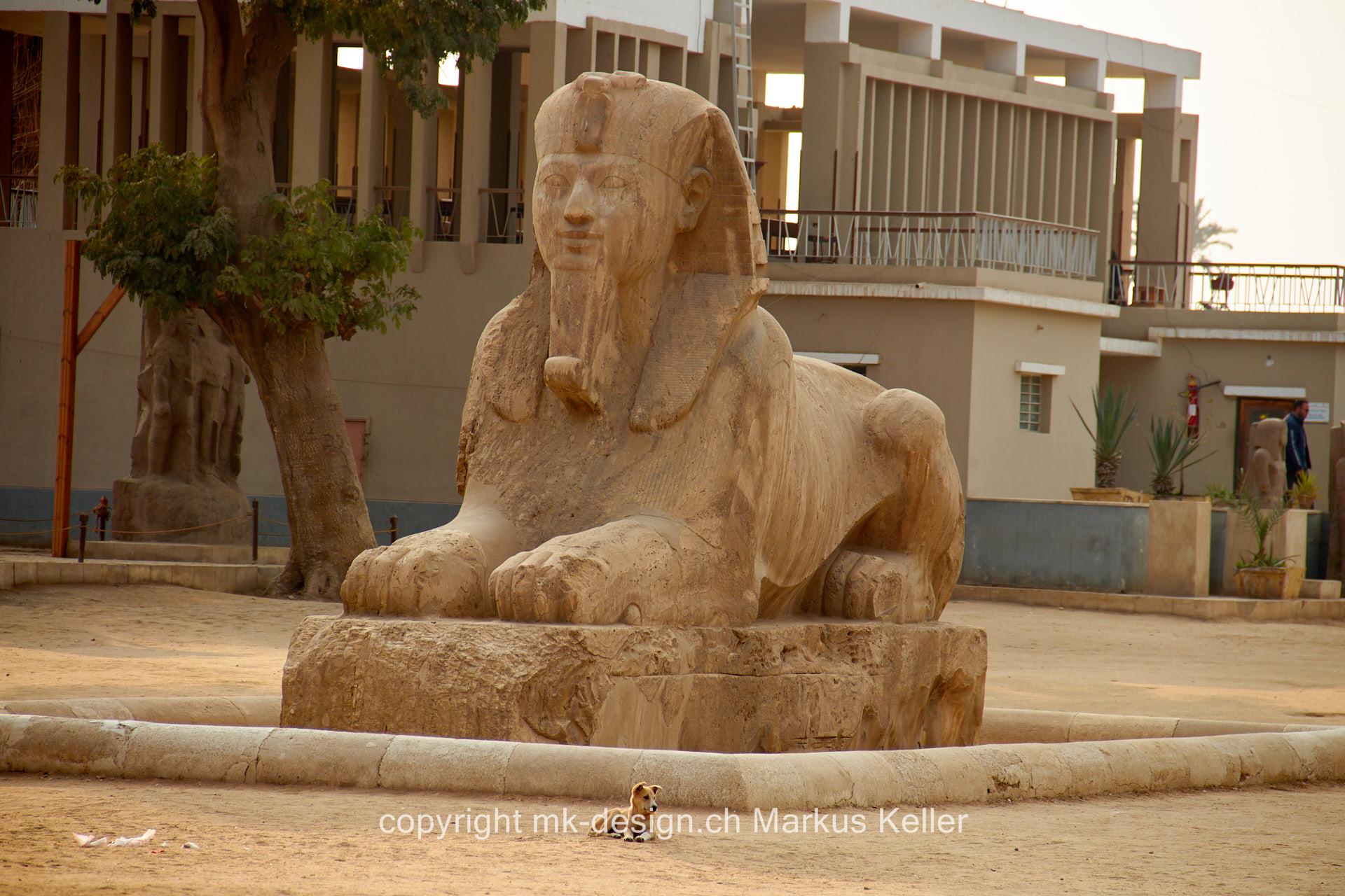 Bauwerk   Statue/Skulptur   Sphings