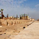 Bauwerk   Tempel   Luxor   Statue/Skulptur   Sphings