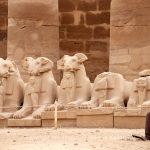 Bauwerk   Tempel   Karnak   Statue/Skulptur   Sphings