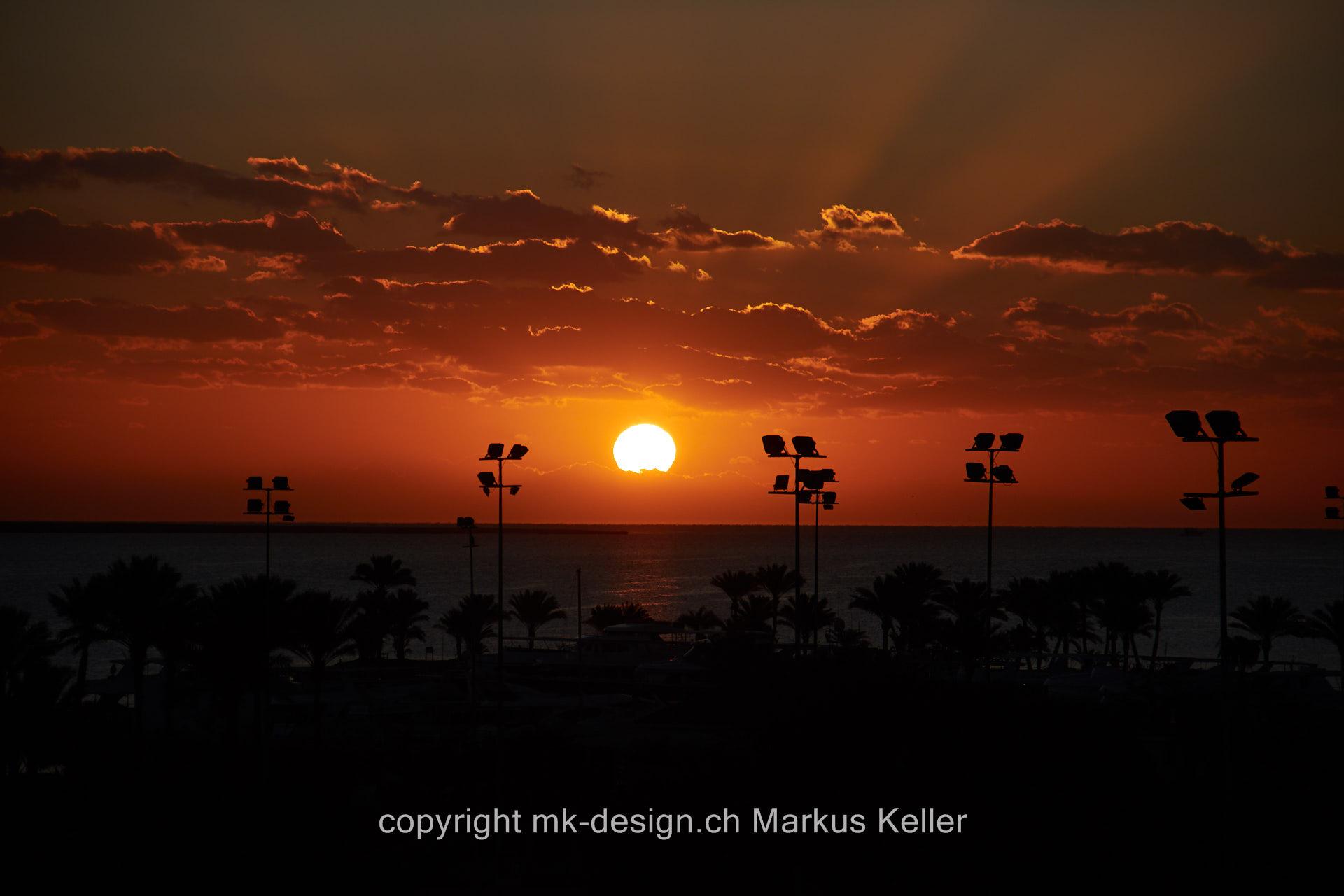 Meer   Sonne   Sonnenaufgang   Pflanze   Baum   Palme