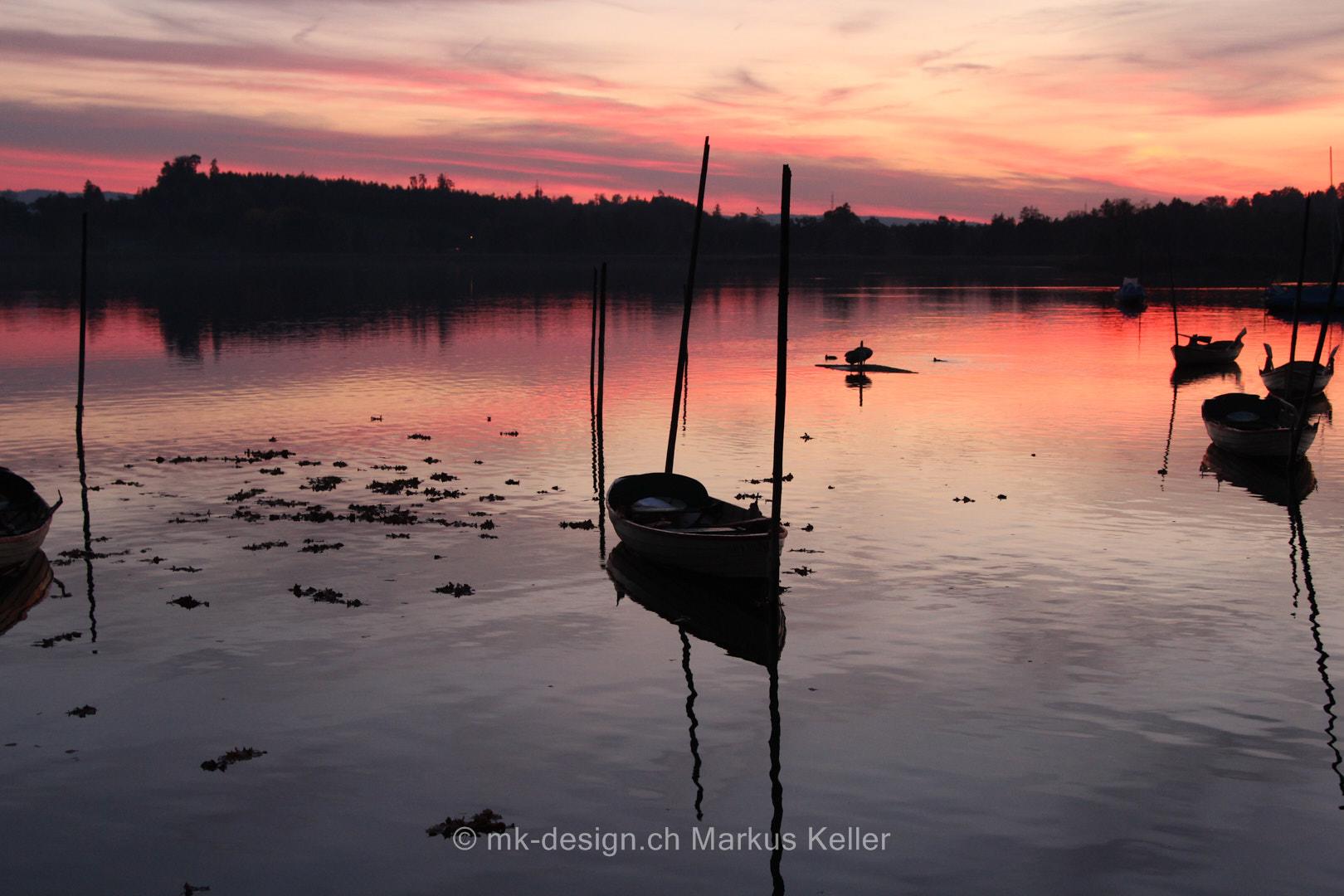 Sonne   Sonnenuntergang   See   Pfäffikersee